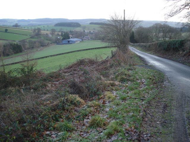 Lane to Hopton Castle