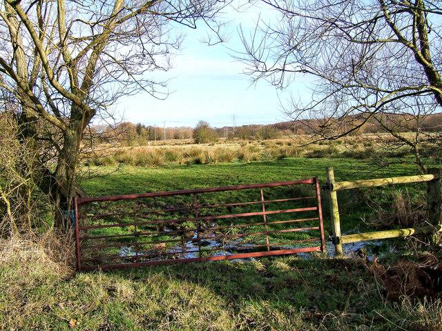 Countryside near Oldington Bridge
