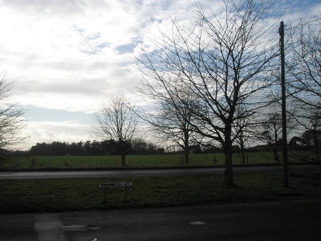 Looking across Penwarden Way towards the A259