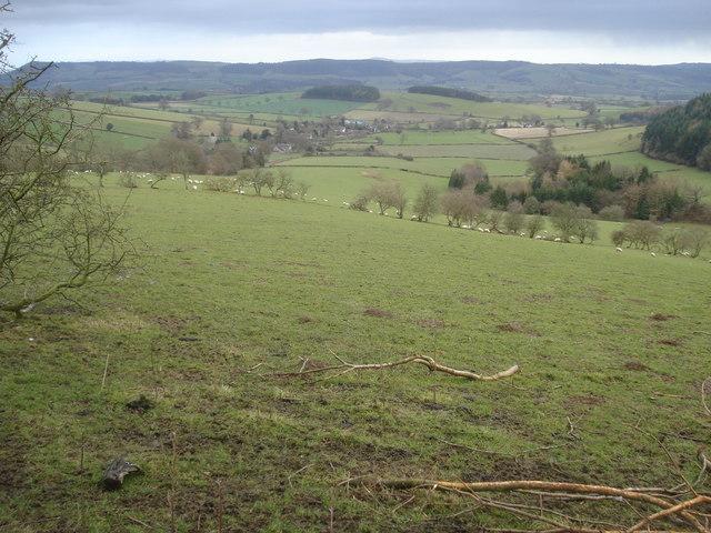 Hillside west of Hopton Castle