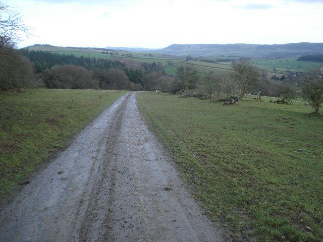 Track from Hopton Wood