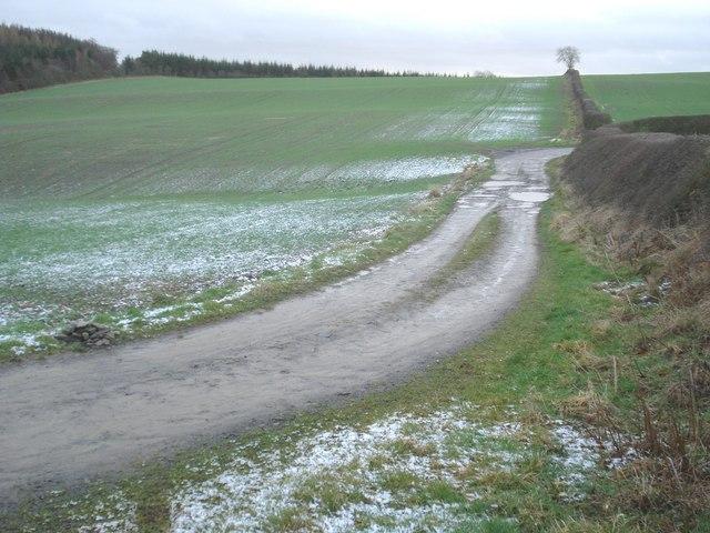 Farm track near Hopton Wood
