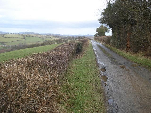 The Obley Lane