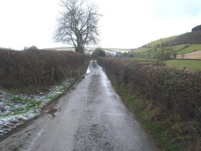 Lane to Obley
