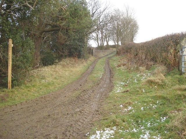 Public footpath to Hopton Wood