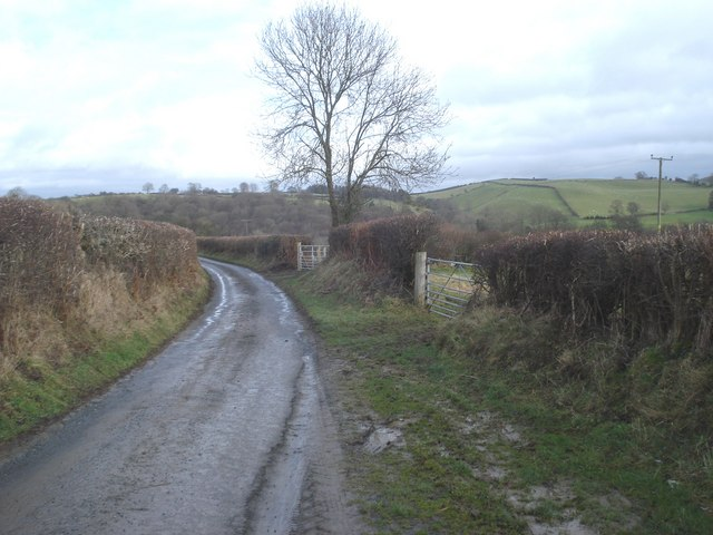 Lane from Pentre Hodre to Obley