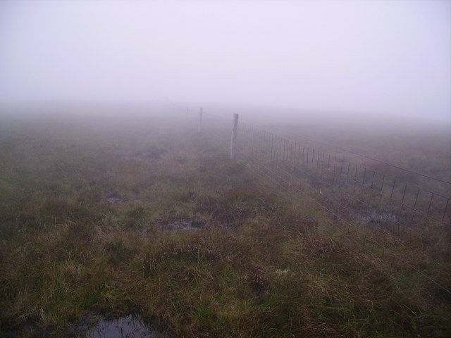Fence, Little Calva