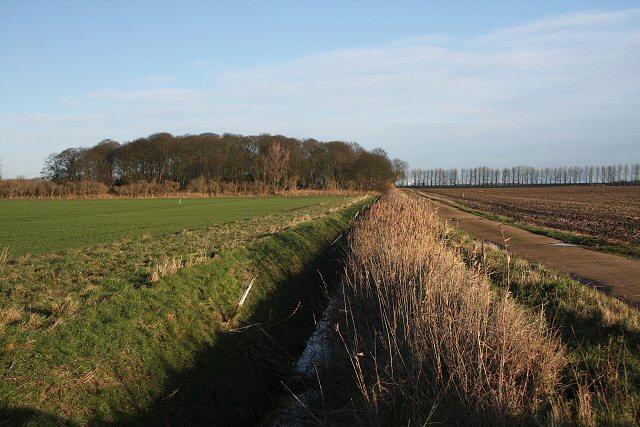 Six Acre Plantation