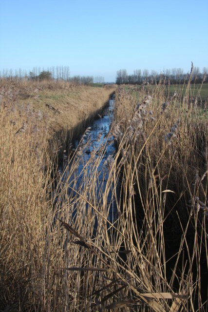 Drainage ditch at Feltwell Anchor
