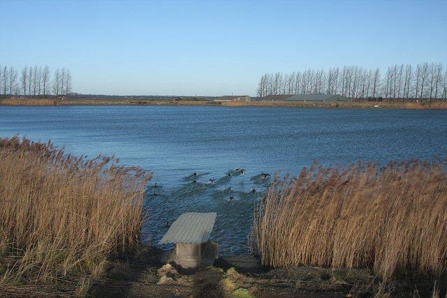 Reservoir at Feltwell Anchor