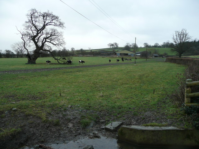 Across the pastures to Betton Farm