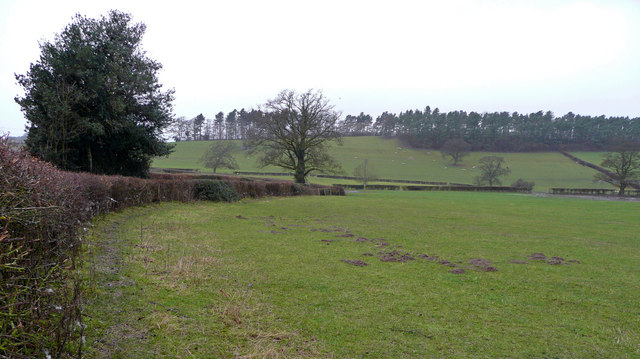 Fields by the lane to Rorrington