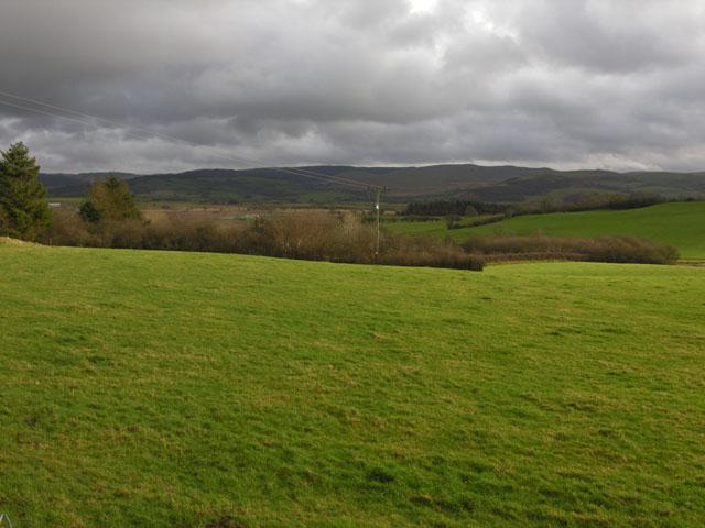 Fields east of Swyddffynnon