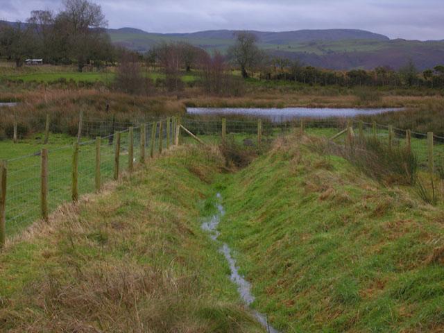 Pond west of Swyddffynnon
