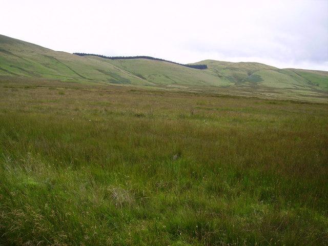 Wythop Moss