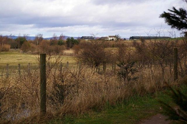 Garth Farm, Forfar