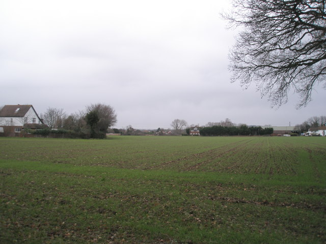 Field between A259 and Broad Road