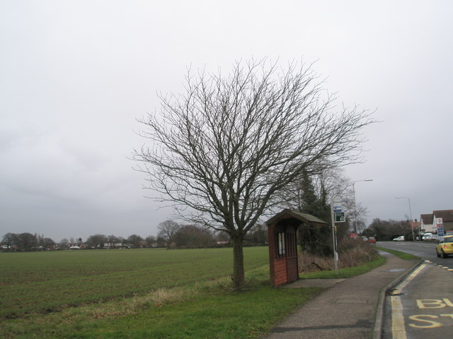 Bus stop on the A259