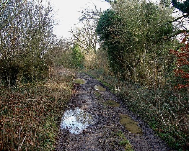 Barton Stacey -  Track to Sutton Scotney