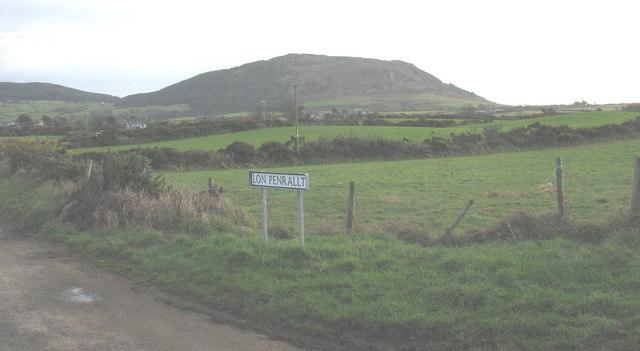 Pastureland alongside Lon Penrallt