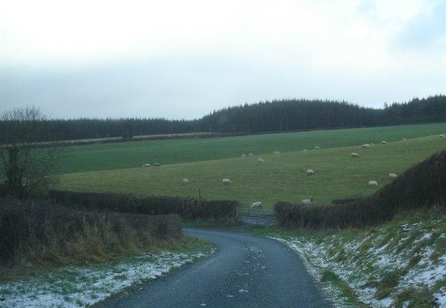 Lane to Pen-y-cwm