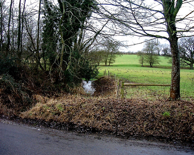 Barton Stacey -  Drainage Ditch