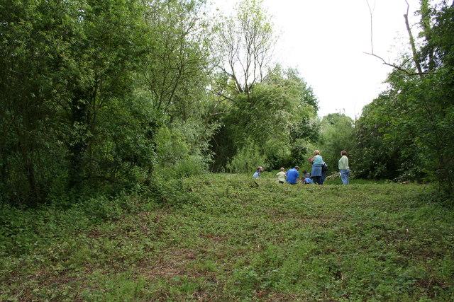 Granny Darley's Field
