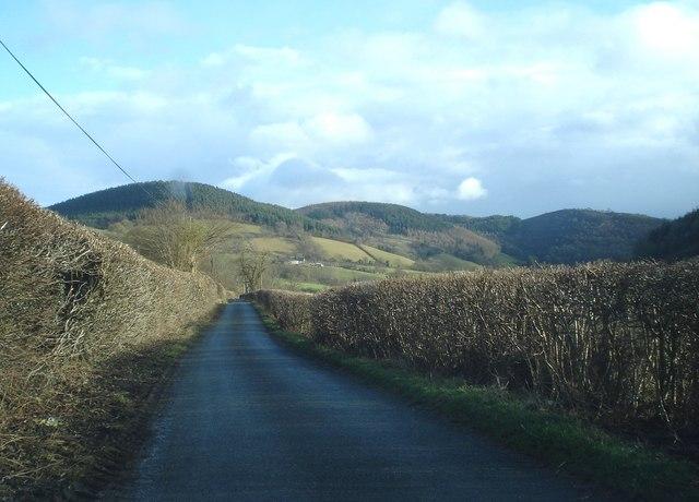 Lane near The Quern
