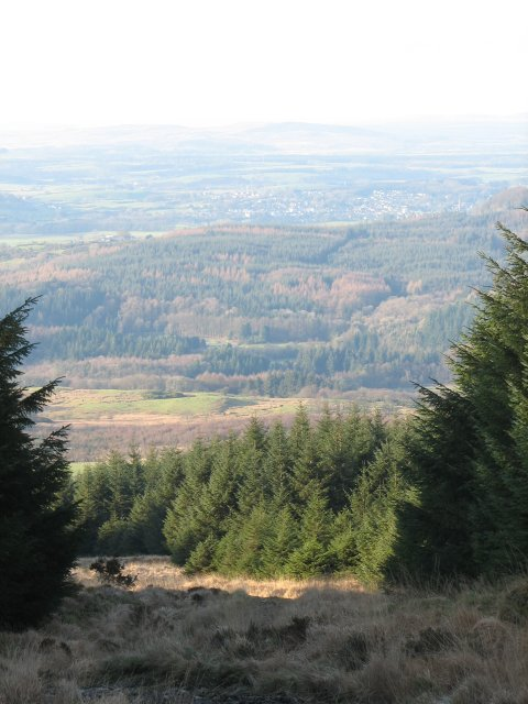 Path on Bardrochwood Moor