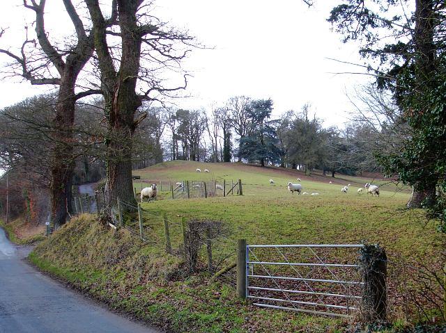 Pasture near Vaynor Park
