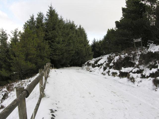 Track near Pen y Garn