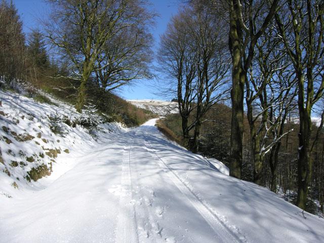 Track under snow near the Arch