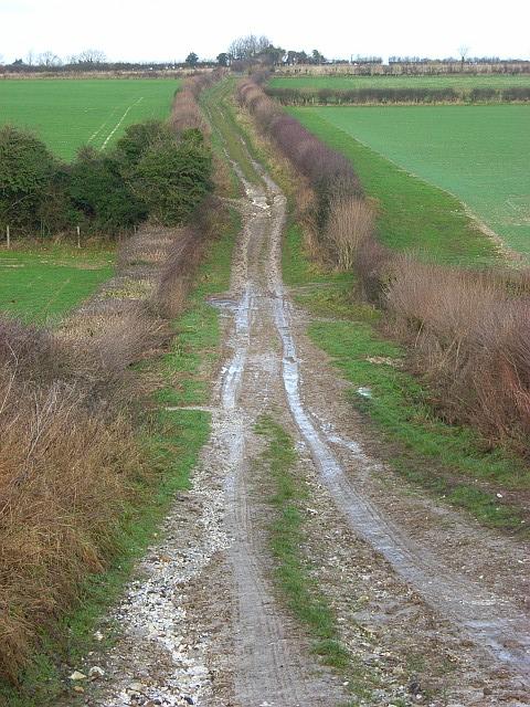 Bridleway, Coombe Bottom