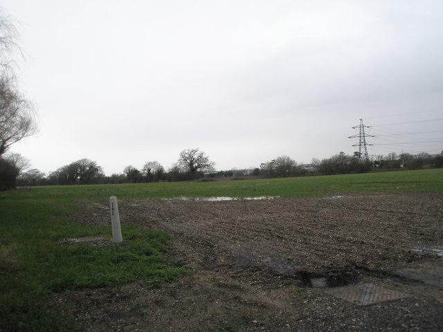 Field adjacent to Marshall's