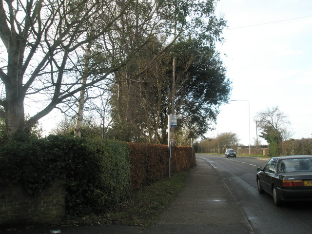 Bus stop on south side of A259