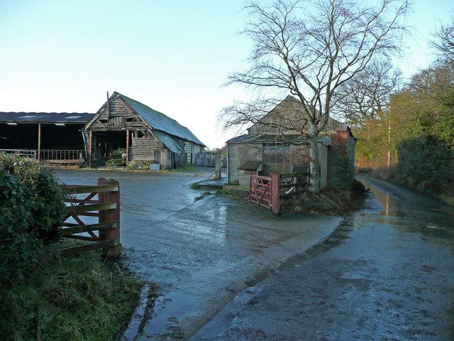 Coed Farm