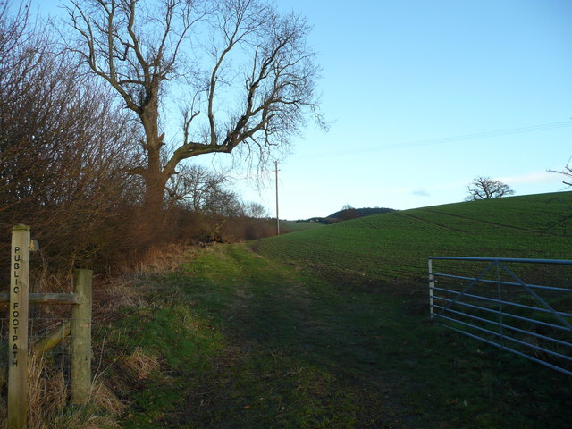 Footpath to Aston on Clun