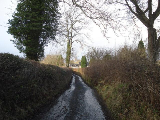 Narrow lane to Pentre Hodre