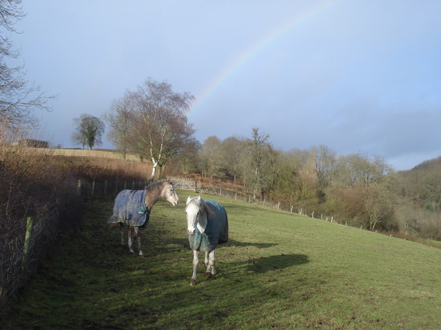 Horses and rainbow near Bryncalled