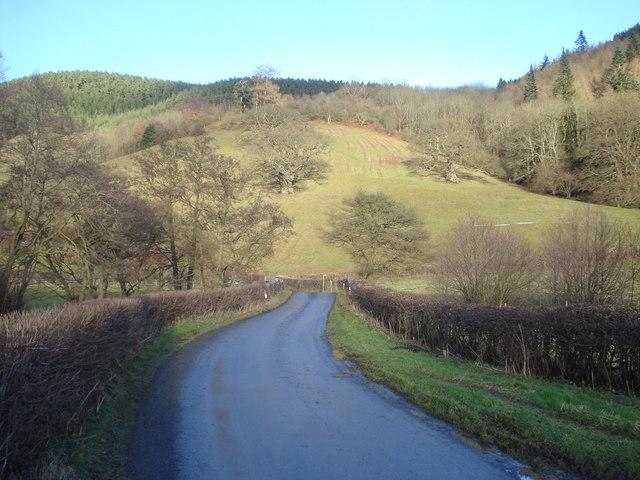 Lane in the Redlake valley