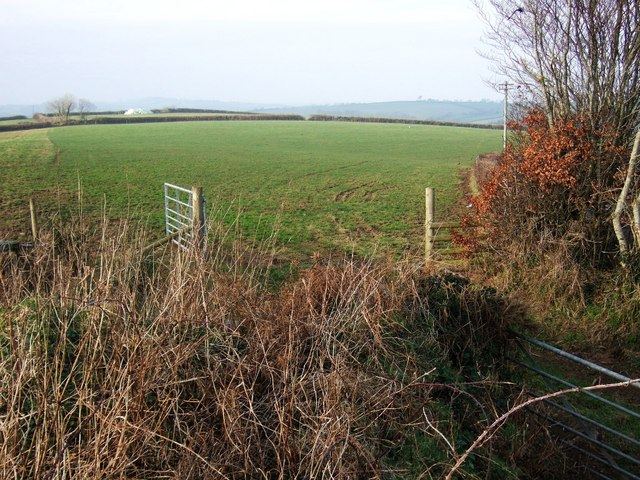 Field at Southdown