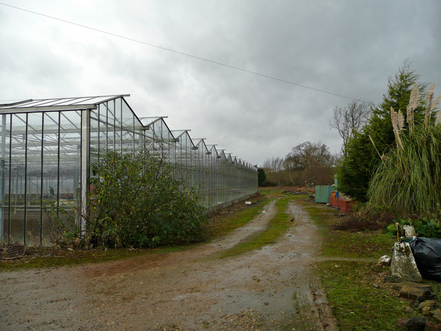 Glasshouse by Sandfield Lane