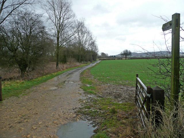 Bridleway to Beckford