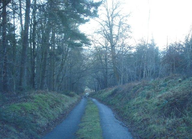 Darky Dale Lane