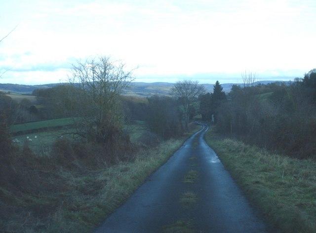 Darky Dale Lane near Ferny Dingle