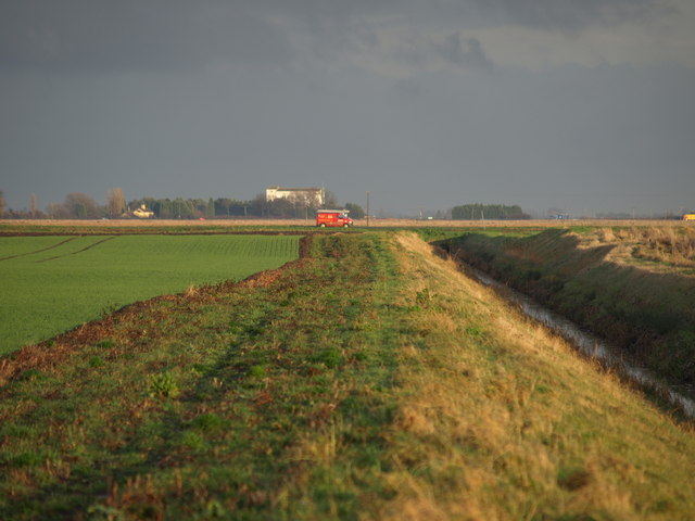 Drain And Field