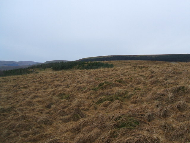 Looking across Eller Haw