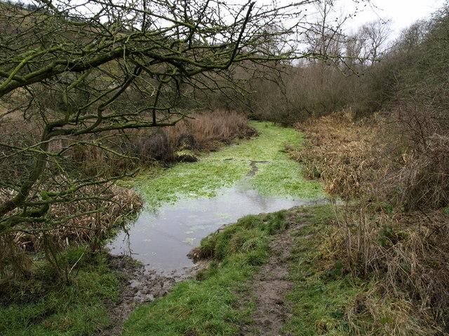 Mill Beck