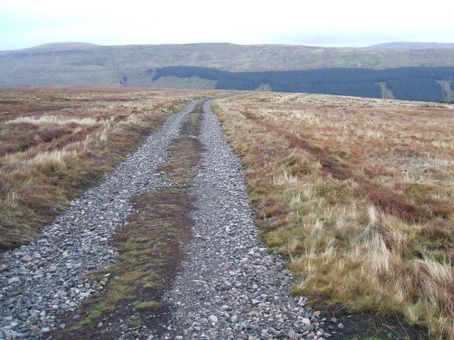 Track at Dry Gill Head
