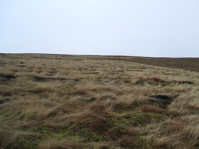 The side of Cotterdale Common